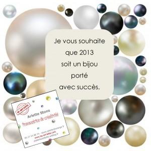 Belle année 20131-300x300